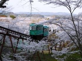 船岡城址公園 桜  スロープカー.jpg