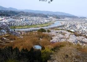 船岡城址公園 桜 展望.jpg